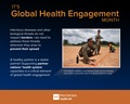 infographic for global health engagement