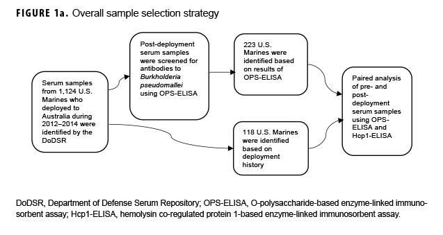 Serological Evidence of Burkholderia pseudomallei Infection in U S