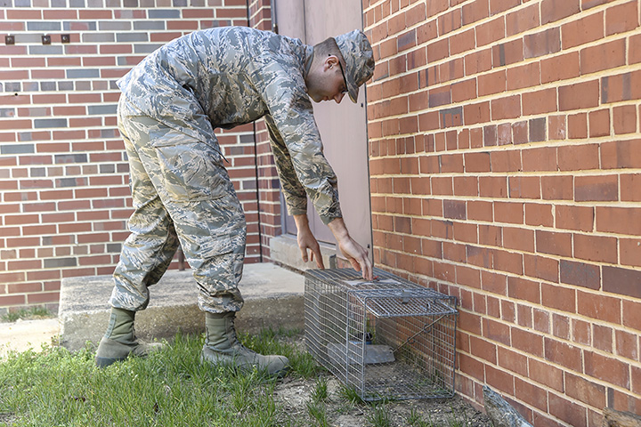Air Force Airman 1st Class Conner Vaught sets a live-trap for feral cats on Joint Base Andrews, Maryland. Feral cats have the potential to carry rabies, causing health issues. (U.S. Air Force photo)