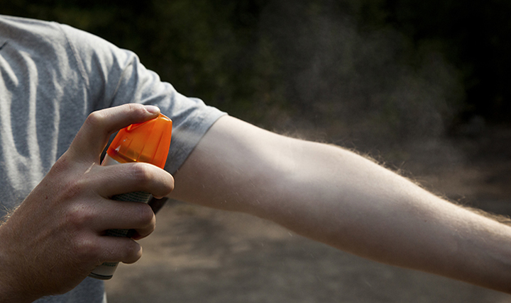 Using an insect repellent spray can be an important measure in guarding against bites from fleas, ticks and mosquitoes this summer.