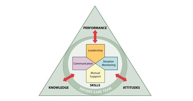 Graphic shows the four main components of effective patient care teams who use Team Strategies and Tools to Enhance Performance and Patient Safety (TeamSTEPPS) to improve quality, safety and efficiency of health care.