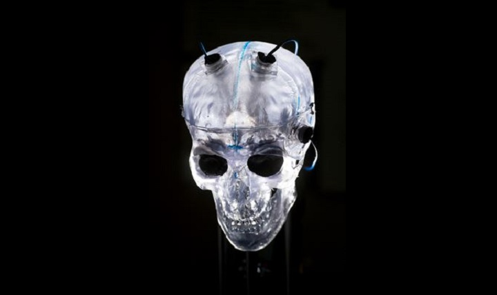 Sensors attached to a translucent model skull are used to measure explosive shock velocity and pressure at the Army Research Laboratory Weapons and Materials Research Directorate at Aberdeen Proving Ground in Aberdeen, Maryland. Data captured by the sensors are used to assist studies in traumatic brain injuries. (DoD photo by EJ Hersom)