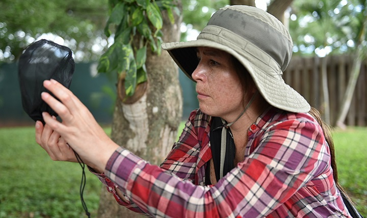 Dr. Gissella Vasquez, deputy director of the Entomology Department at the U.S. Naval Medical Research Unit No. 6, inspects a vector trap at Soto Cano Air Base, Honduras. The Joint Task Force-Bravo Medical Element, NAMRU- 6 and the Uniformed Service University of the Health Sciences partnered for an ongoing tropical disease study, testing live samples and collecting vectors that could be potential carriers for diseases. (U.S. Army photo by Maria Pinel)